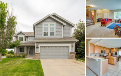 Sold: Immaculate Home in Littleton